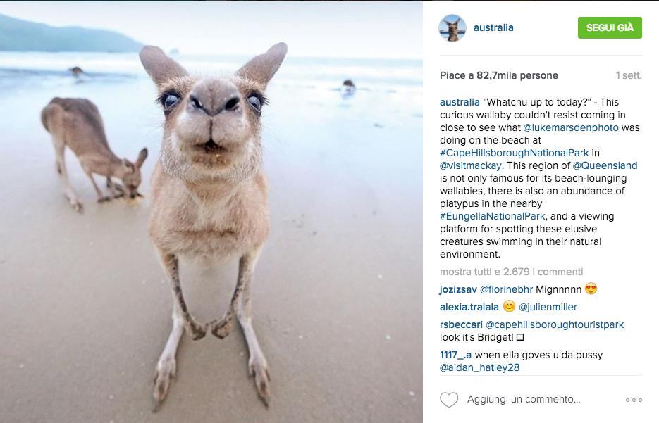 profili Instagram