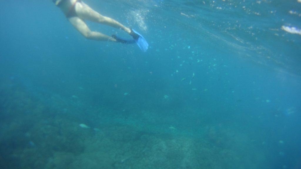 viaggio alle Fiji