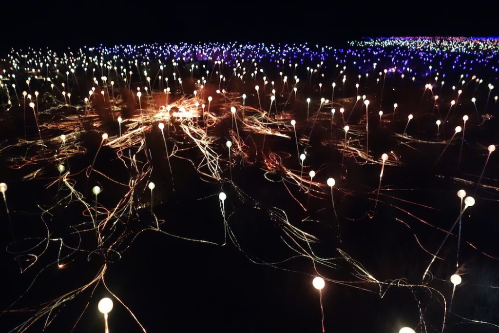 Field of Light a Uluru
