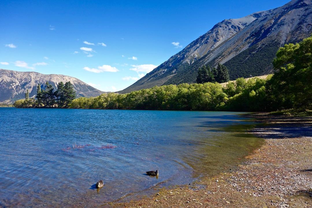 cose da sapere prima di andare in Nuova Zelanda
