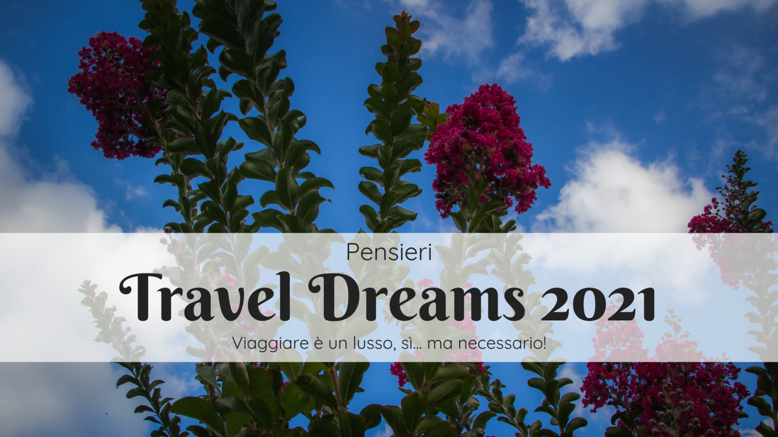 Travel Dreams 2021